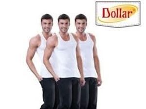Picture of Dollar Lehar
